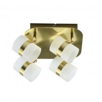 DE MARKT 704010704 | Galaxy-MW De Markt mennyezeti lámpa elforgatható alkatrészek 4x LED 800lm 3000K IP44 matt arany, opál