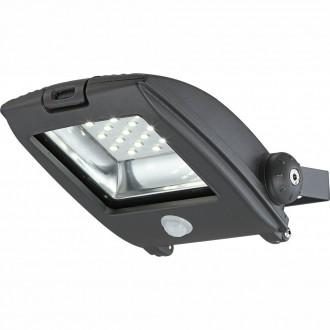 GLOBO 34218S | Projecteur_I Globo fényvető lámpa mozgásérzékelő elforgatható alkatrészek 1x LED 750lm 6500K IP65 sötét szürke, átlátszó
