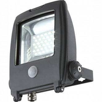 GLOBO 34219S | Projecteur_I Globo fényvető lámpa mozgásérzékelő elforgatható alkatrészek 1x LED 1500lm 6500K IP65 sötét szürke, átlátszó