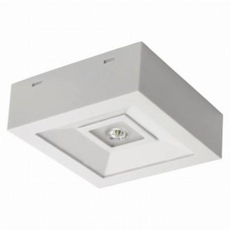 KANLUX 18640 | Tric-Powerled-NT Kanlux vészvilágító lámpa falra és mennyezetre is szerelhető 1x LED 200lm 6000-8000K IP41 fehér