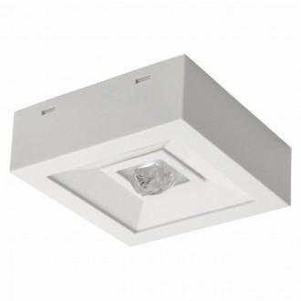KANLUX 18645 | Tric-Powerled-NT Kanlux vészvilágító lámpa falra és mennyezetre is szerelhető 1x LED 200lm 6000-8000K IP41 fehér