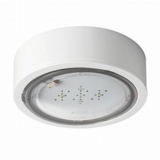 KANLUX 27381 | iTech Kanlux kettős feladatú vészvilágító 1h - fali, mennyezeti, beépíthető lámpa - ST kerek 1x LED 475lm 5000K IP65 fehér