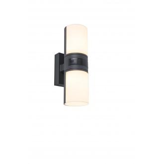 LUTEC 5198101118 | Cyra Lutec falikar lámpa elforgatható alkatrészek 2x LED 1000lm 3000K IP54 sötétszürke, opál