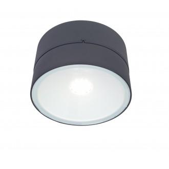 LUTEC 5626002118 | Trumpet-LU Lutec falikar lámpa elforgatható alkatrészek 1x LED 1650lm 4000K IP54 antracit szürke