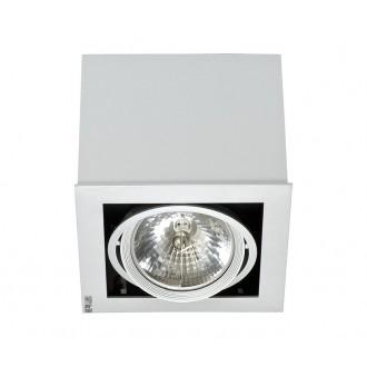 NOWODVORSKI 5315 | BoxN Nowodvorski mennyezeti lámpa elforgatható fényforrás 1x G53 / AR111 szürke