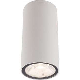 NOWODVORSKI 9111 | Edesa-LED Nowodvorski mennyezeti lámpa 1x LED 250lm 3000K IP54 fehér