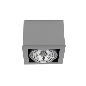 NOWODVORSKI 9496 | BoxN Nowodvorski mennyezeti lámpa elforgatható fényforrás 1x GU10 / ES111 szürke
