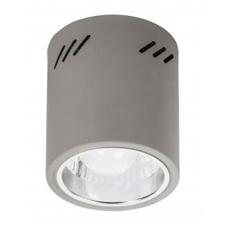 RABALUX 2485 | Donald Rabalux mennyezeti lámpa 1x E27 szürke