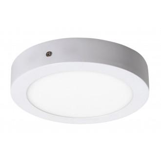 RABALUX 2655 | Lois Rabalux fali, mennyezeti LED panel kerek 1x LED 800lm 4000K matt fehér, fehér