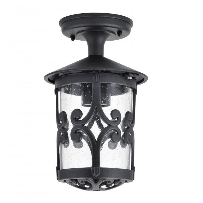 RABALUX 8539 | PalmaR Rabalux mennyezeti lámpa 1x E27 IP23 fekete, átlátszó